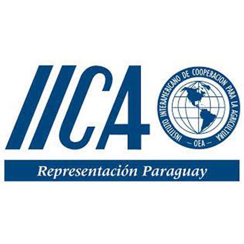 IICA Peru